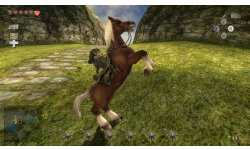 0 The Legend of Zelda Twilight Princess HD (6)