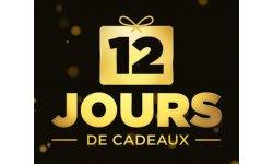 12 jours de cadeau 2013 presentation 4.