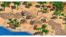 age-of-empires-2-hd-extension_1