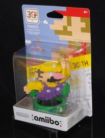amiibo fan made Wario 3