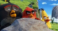 Angry Birds film movie head