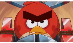 angry birds go head