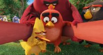 Angry Birds Le Film head