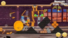 Angry Birds PSVita 16.10.2013 (1)