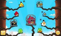 Angry Birds PSVita 16.10.2013 (3)