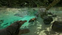 ARK Survival Evolved (14)