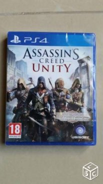 Assassin creed unity france  (1)