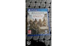 Assassin creed unity france  (2)