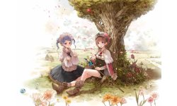 Ateliera Rorona PLus 3DS 40