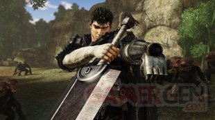 Berserk and the Band of the Hawk images