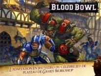 blood bowl screenshot  (5).