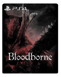 Bloodborne 11 12 2014 artwork