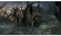 Bloodborne 14.08.2014  (11)
