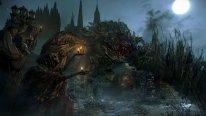 Bloodborne 14.08.2014  (7)