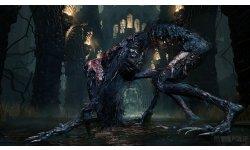 Bloodborne (46)