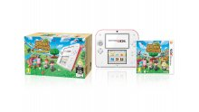 Bundle 2DS Animal Crossing 2
