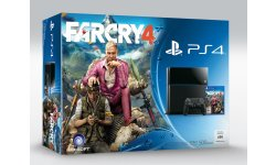 Bundle PS4 Far Cry 4