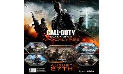 Call of Duty Black Ops II Apocalypse art