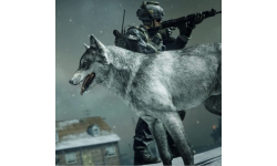 Call of Duty Ghosts DLC loup