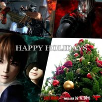 Cartes Voeux Noel 2014 Team Ninja