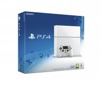 Console Ps4 500 Go nue pack boite (3)