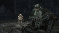 Dark Souls II Crown of the Old Iron King 26 08 2014 screenshot (2)