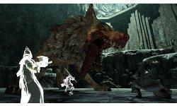 Dark Souls II Scholar of the First Sin 15 01 2015 screenshot 7