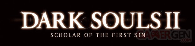Dark Souls II Scholar of the First Sin 25.11.2014  (1)
