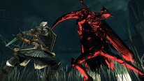 Dark Souls II Scholar of the First Sin  (4)