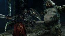 Dark-Souls-II-Scholar-of-the-First-Sin- (8)
