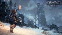 Dark Souls III Ashes of Ariandel image screenshot 7