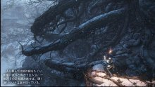 Dark Souls III Ashes of Ariandel image screenshot 8