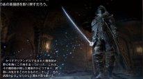 Dark Souls III Ashes of Ariandel image screenshot 9