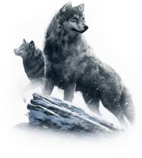 destiny seigneurs de fer loups