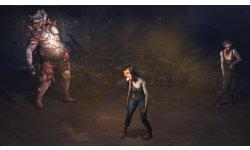 Diablo III Reaper of Souls Last of Us