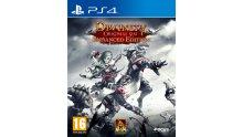 Divinity Original Sin Enhanced Edition jaquette PS4
