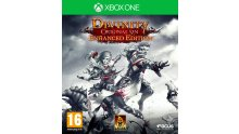 Divinity Original Sin Enhanced Edition jaquette Xbox One