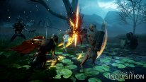 Dragon Age Inquisition 13.08.2014  (10)