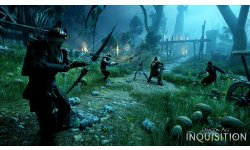 Dragon Age Inquisition 13.08.2014  (14)