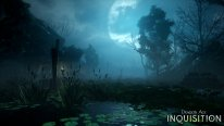 Dragon Age Inquisition 13.08.2014  (4)