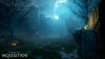 Dragon Age Inquisition 13.08.2014  (5)