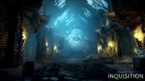 Dragon Age Inquisition 13.08.2014  (8)