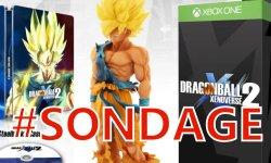 Dragon Ball Xenoverse 2 sondage de la semaine communaute (1)