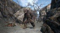 Dragon Dogma Online 06 2015 006
