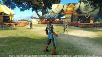Dragon Quest Heroes 24 12 2014 screenshot 2