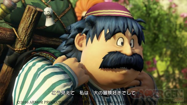 Dragon Quest Heroes II (18)
