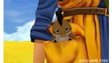 Dragon Quest VIII  L'Odyssée du Roi Maudit  (13)