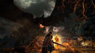 Dragon's Dogma Dark Arisen 08 09 2015 screenshot (1)