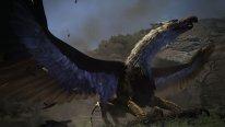 Dragon's Dogma Dark Arisen 08 09 2015 screenshot (4)