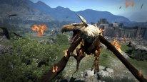 Dragon's Dogma Dark Arisen 08 09 2015 screenshot (5)